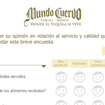 Solution: expert hospitality l customer satisfaction survey<br /> Client:&nbsp; Mundo Cuervo<br /> Location: Tequila, Jalisco